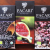Pacari Chocolate – OK but too pricey