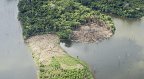 The Amazon Rain Forest is gone – this is the last chapter in a book that was conceived a long time ago