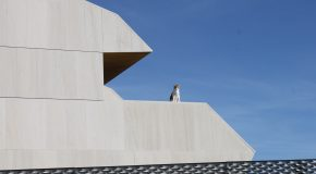 Cat and contemporary architecture on the edge of Madrid